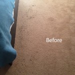 Bedroom-Carpet-Cleaning-Campbell-A
