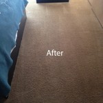 Bedroom-Carpet-Cleaning-Campbell-B