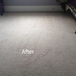 Bedroom-Wall-to-Wall-Carpet-Cleaning-Campbell-B