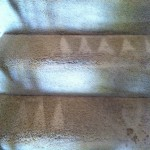 Campbell-Stairs-Carpet-Cleaning