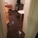 Campbelloffice-room-flood-damage-repair