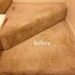Stairs-Carpet-Cleaning-Campbell-A
